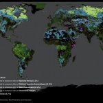 global-safety-net-harita